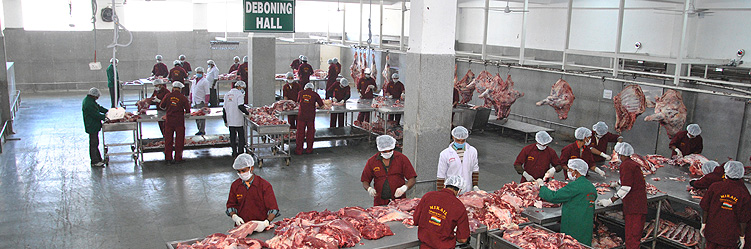 beef-export