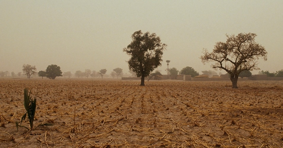 "Farms and farmers have long been ""in the crosshairs of climate change."" (Photo: World Bank/flickr/cc)"